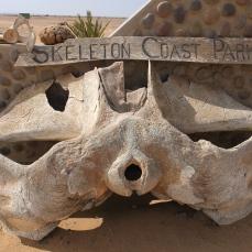 Namibië_skeleton coast park